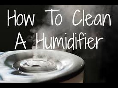 clean-your-humidifier